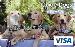Guide Dog puppies-in-training on the GDB Visa card